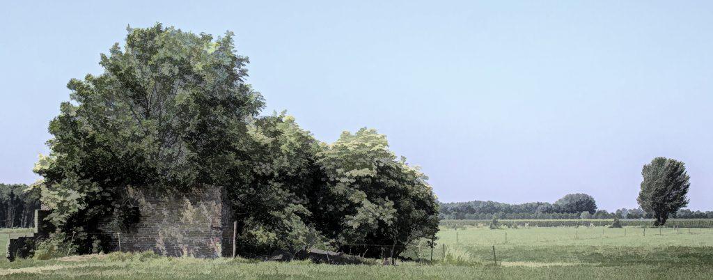 dick-jeukens-bomen-6056